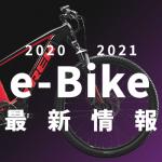 2020-2021_Icon_e-bike
